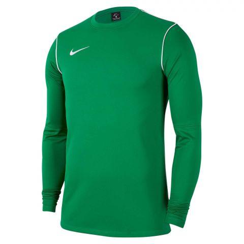 Nike-Park-20-Crew-Sweater-Junior-2106281044