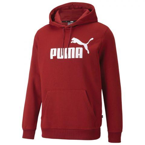 Puma-Essential-Hoodie-Heren-2108241759
